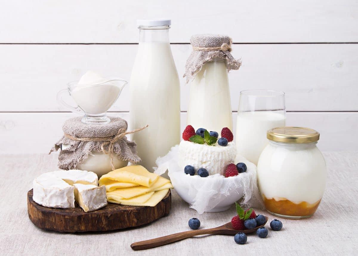 Protéines laitières et activité antitumorale